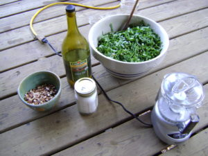 ingredients for chickweed pesto