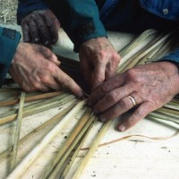 Hands weaving a basket ancestral skills