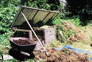 compost pile for sustainability