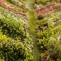 teaching permaculture design mapping