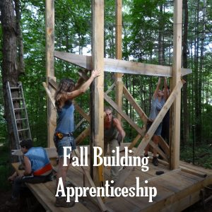tiny house apprentices putting up a tiny house
