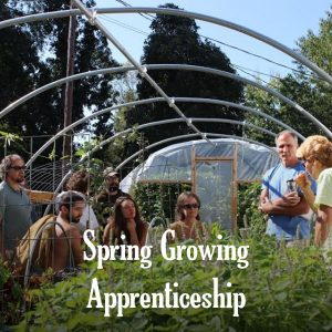 gardening apprentices in greenhouse