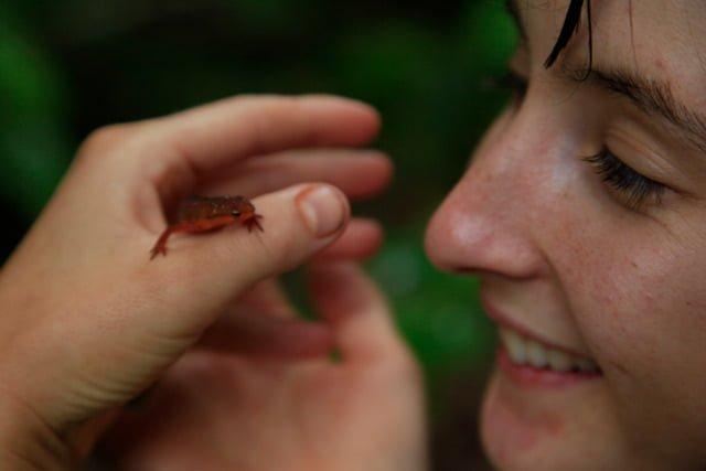 closeup of woman with a salamander