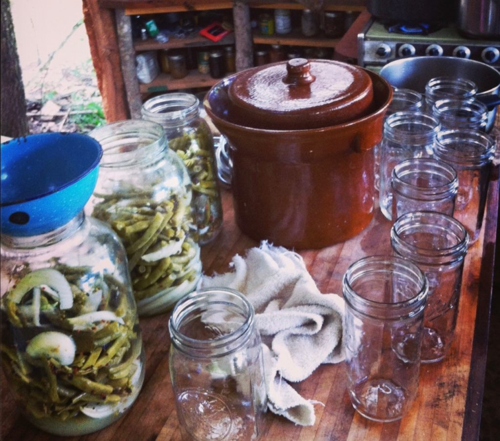 lactofermentation of pickles with jars