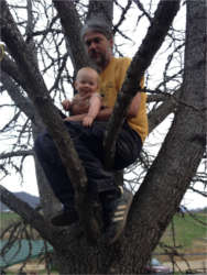 Eric Bell arborist in a tree with his baby