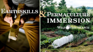 banner for earthskills and permaculture design certificate course