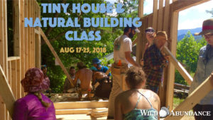 natural building and tiny house workshop