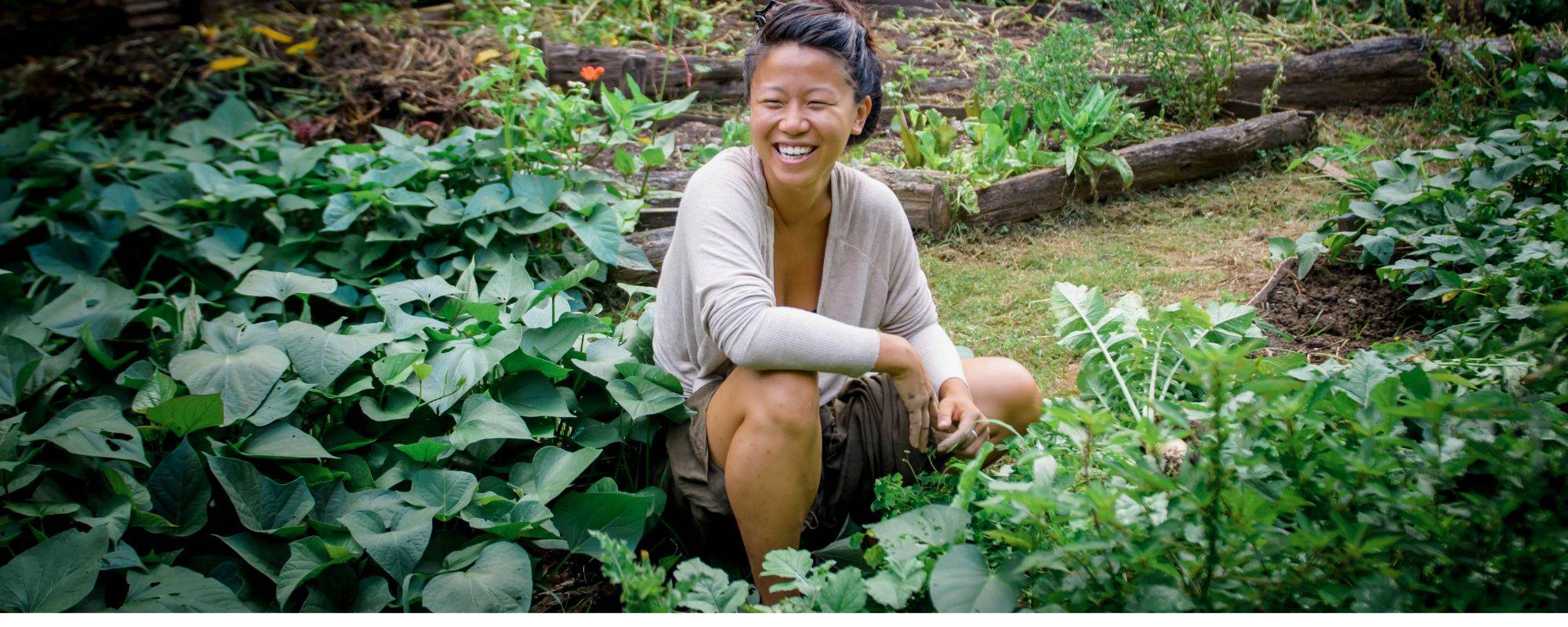 8 month permaculture apprenticeship banner