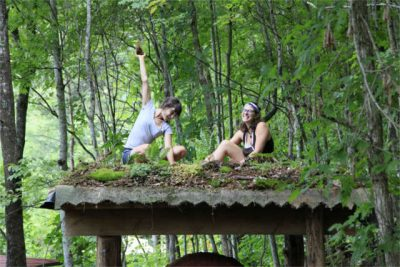 natural building apprentices on living roof