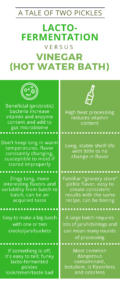 pickle infographic