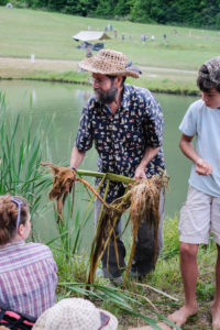doug elliott harvesting cattail roots