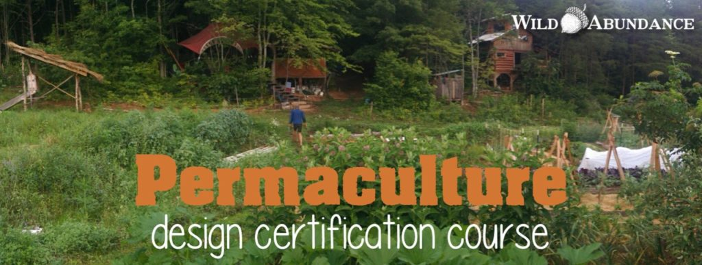 permaculture garden with person walking and log cabin