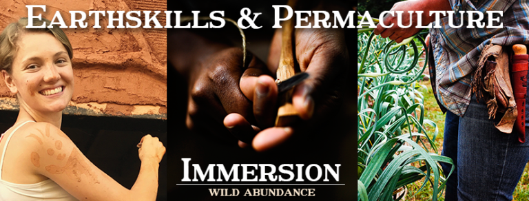 banner ad for earthskills and permaculture immersion with natural building, spoon carving, and gardening