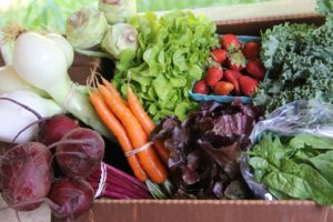 CSA box of spring vegetables from Ivy Creek Family Farm