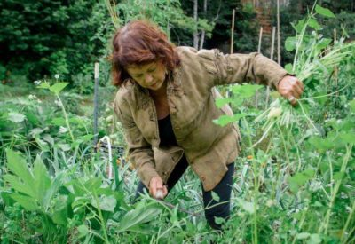 woman weeding permaculture garden