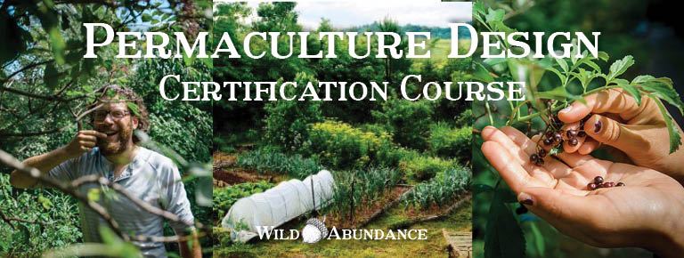 permaculture design certification course banner