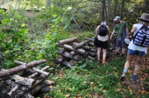 students in a permaculture design course looking at shiitake logs