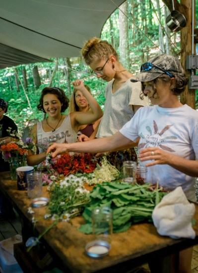 permaculture community wildcrafting