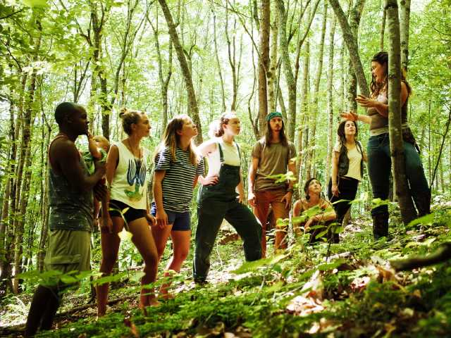 natalie bogwalker teaching about guilds in the forest to permaculture apprentices