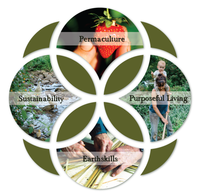 flower of life mandala infographic with elements of earthskills permaculture sustainability and purposeful living