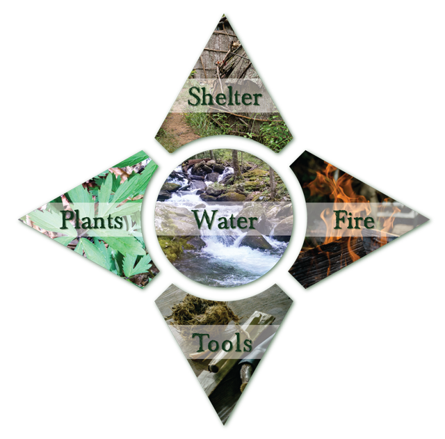 essential survival skills infographic with water shelter fire tools plants