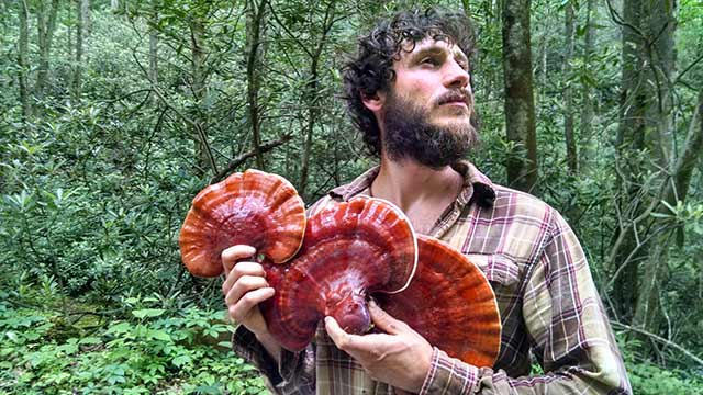 man holding reishi mushrooms in the woods