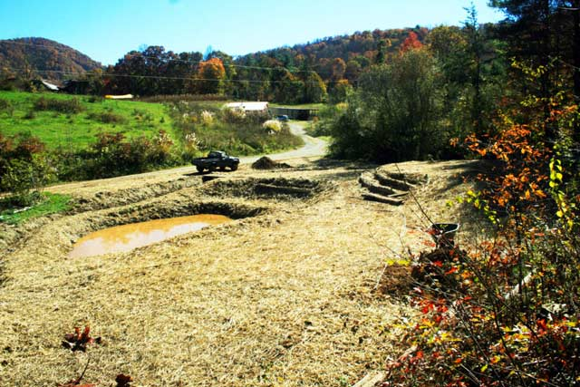 straw mulch covering disturbed soil around a pond after permaculture earthworks