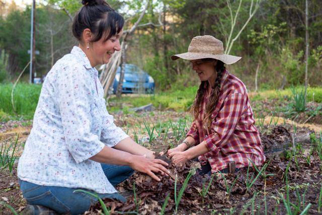 Gardening teachers mulching onions