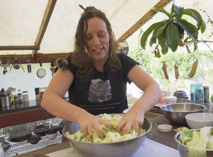 fermentation teacher making cabbage kraut