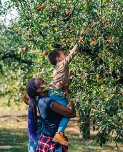 mother holding up a child to pick an apple from a tree