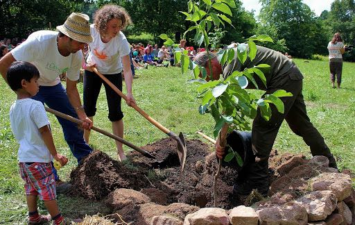 group of people planting a tree together