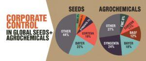 chart of seed companies and biotech comopanies