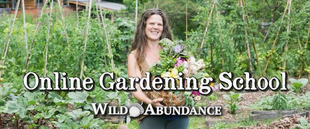 Online Gardening School Banner with Natalie Bogwalker