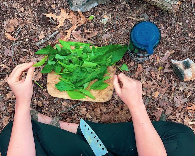 chopping wild foraged greens